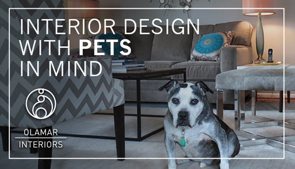 Designing with your Four-legged Family Members in Mind